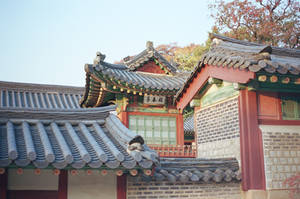Changdeokgung Palace: Interior Grounds II by neuroplasticcreative