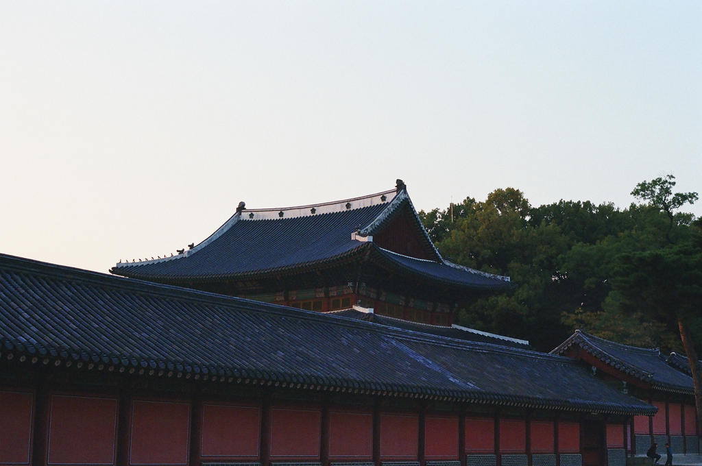 Changdeokgung Palace: Rooftop at Dusk by neuroplasticcreative