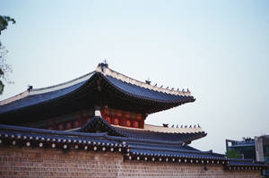 Changdeokgung Palace: Rooftop Guardians by neuroplasticcreative