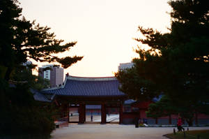 Changdeokgung Palace: Gate IV by neuroplasticcreative