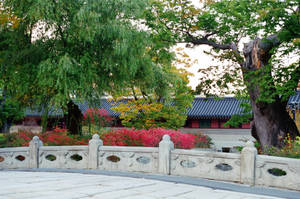 Changdeokgung Palace: Bridge Across Water by neuroplasticcreative