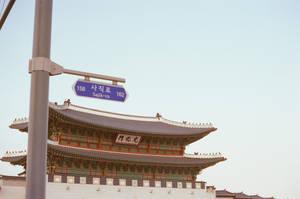 Gyeongbokgung Palace: Sajik-ro by neuroplasticcreative