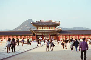 Gyeongbokgung Palace: Palace Gate by neuroplasticcreative