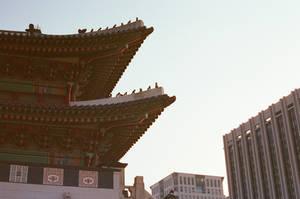 Gyeongbokgung Palace: Rooftop Guardians II by neuroplasticcreative