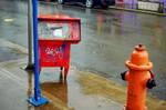 Alberta in the Rain: Redrun