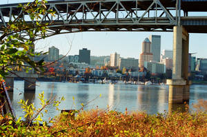 End of the Trail: PDX by neuroplasticcreative