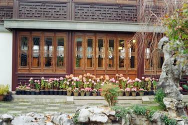 Lan Su: Tilting Garden by neuroplasticcreative