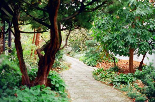 Lan Su: Path Inward by neuroplasticcreative