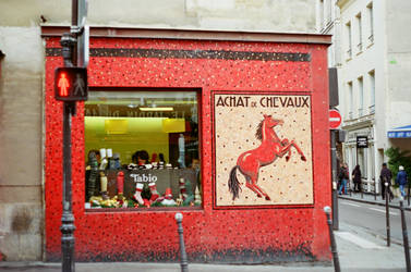Paris Le Marais: Achat de Chevaux by neuroplasticcreative