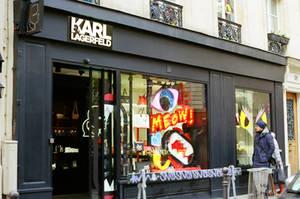 Paris Le Marais: Karl Lagerfeld Choupette by neuroplasticcreative