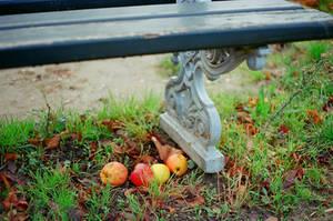 Paris: Pommes by neuroplasticcreative