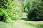 Prior Park Landscape Garden: Down The Hill
