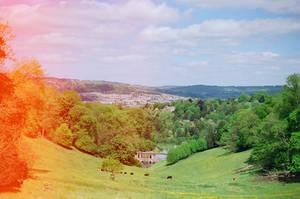 Prior Park Landscape Garden: Palladian View, I by neuroplasticcreative