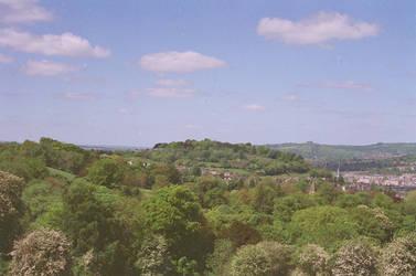 Prior Park Landscape Garden: View of Bath, IV by neuroplasticcreative