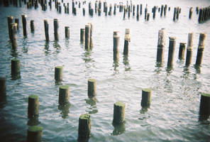 Brooklyn in Color: Sticks 'n' Stones, I by neuroplasticcreative