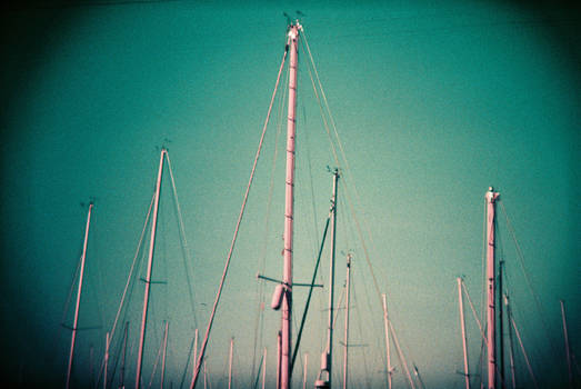 Alienation: Tall Direction