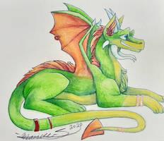 Citrus-Colored Dragon