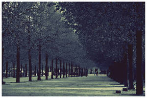 memories. by dunkeltoy
