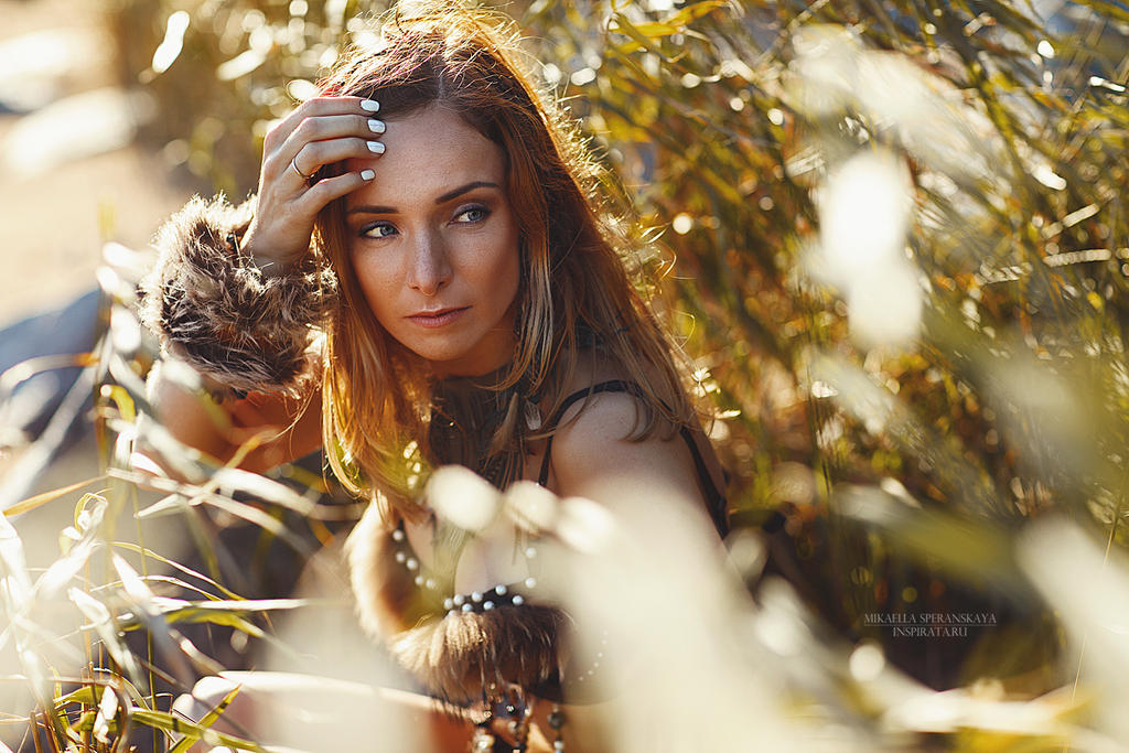 Just a little Wild II by rainris
