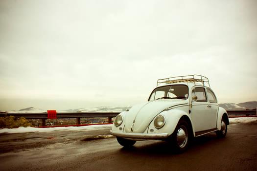 Volkswagen Bug 1