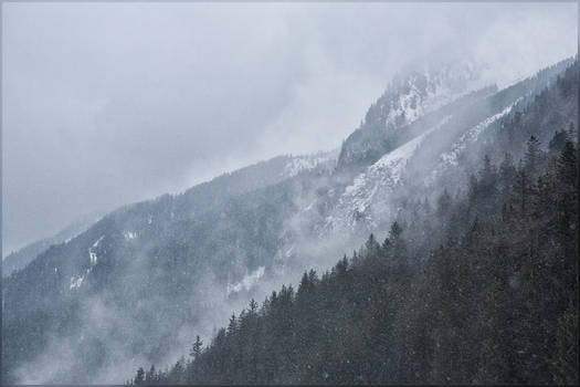 Antholz 2020: These Mist Covered Mountains