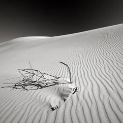 Dunes 02 by LanceRamoth