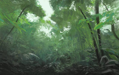 Amazon forest study
