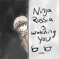 Ninja Russia... by Darkfire75