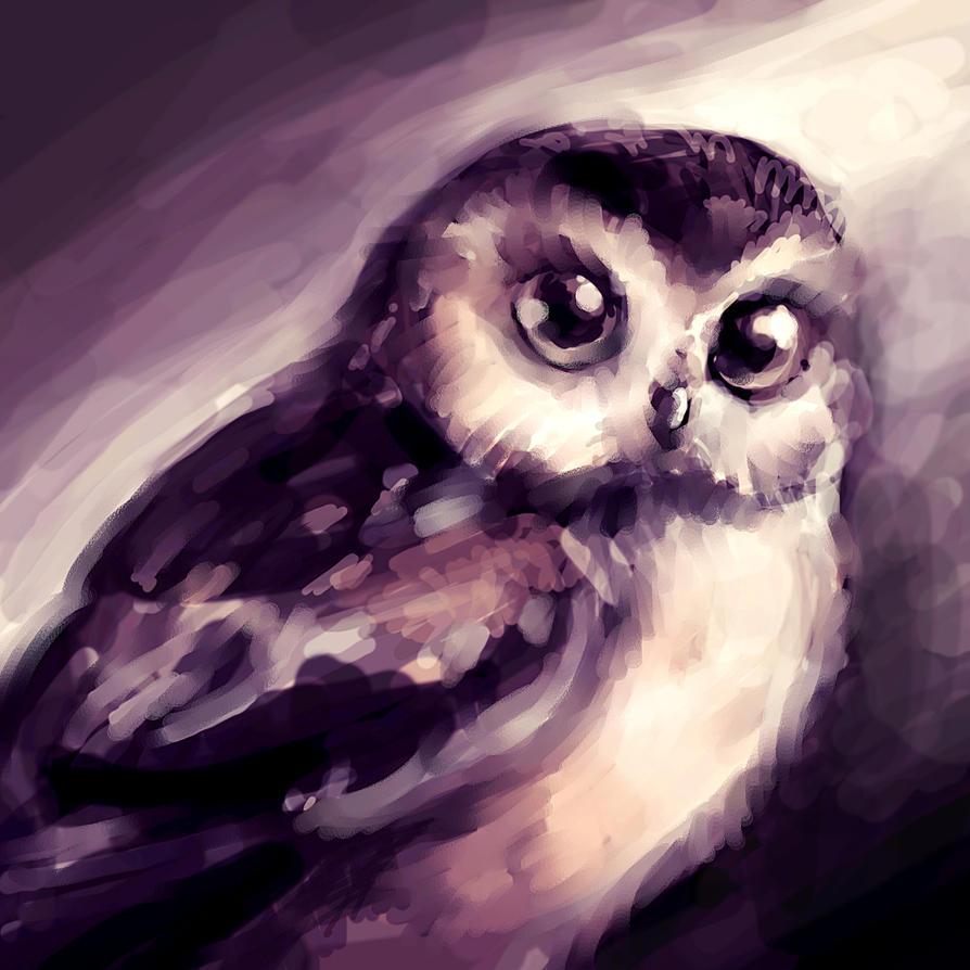 beloved owl by RedGraf