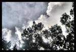 Stormed Skies
