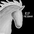 RIP MEGHAN PIXEL by Secrets-Kept-Secret
