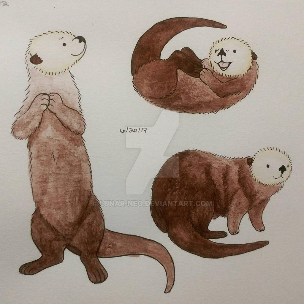Sea Otter Study by lunar-neo