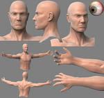 Human male