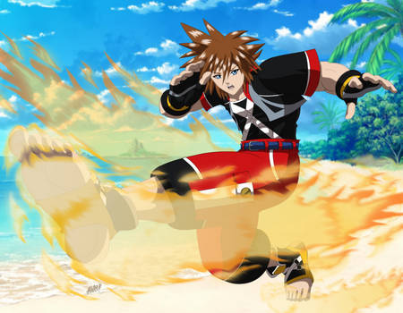 Commission: Street Fighter Sora