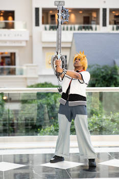 Roxas with Oblivion