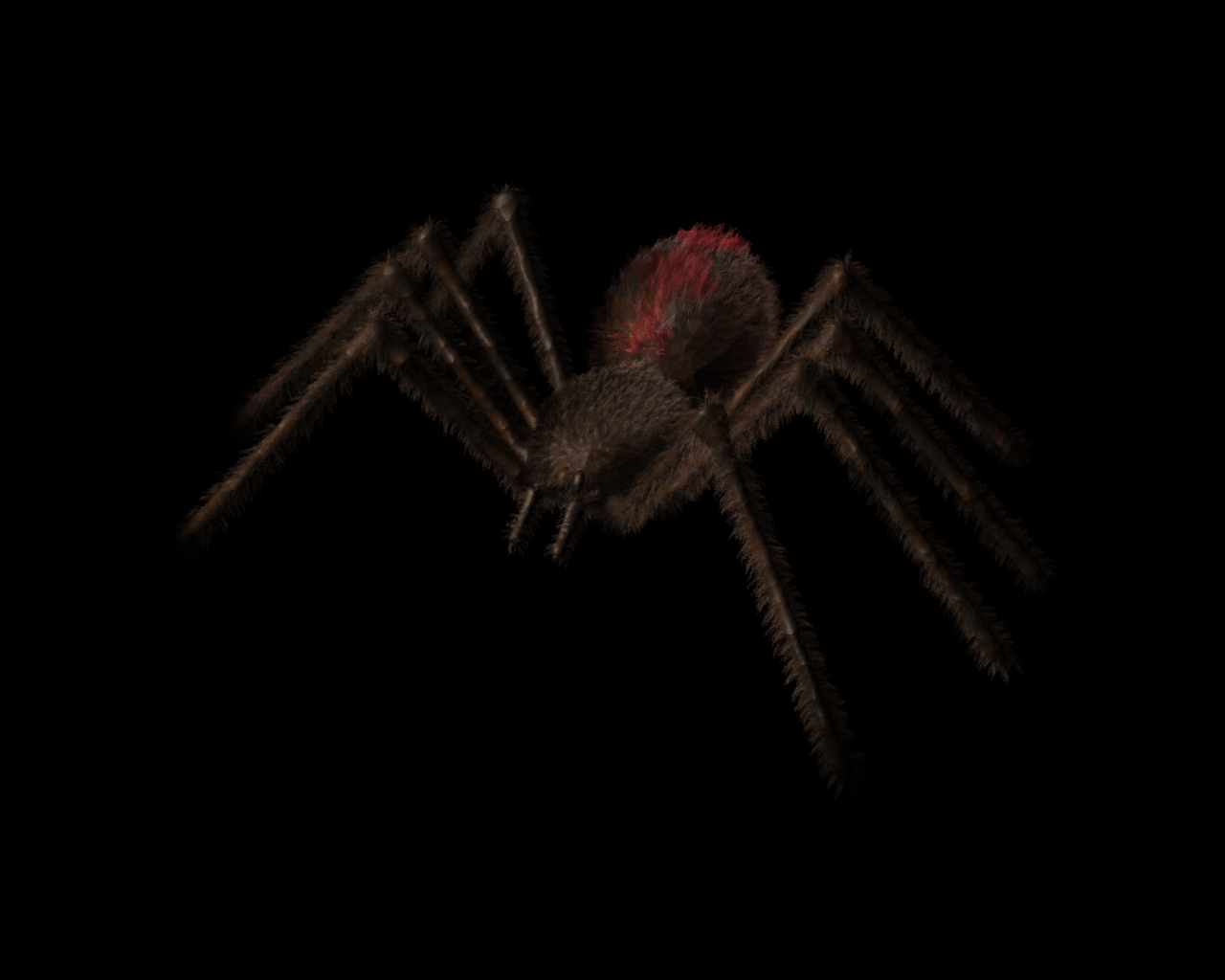 Spider by someoneelse6