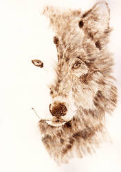 Wolf pyrography WIP by Everild-Wolfden