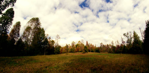 Autumn Fields by ramblepaw