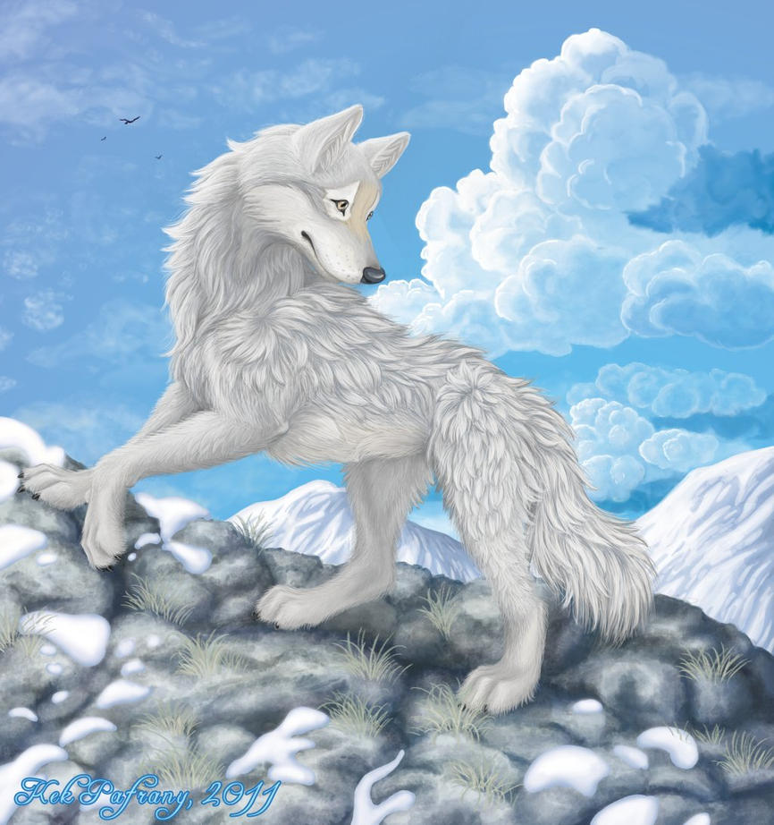 Wolf of the cold winds by KekPafrany