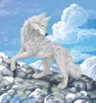 Wolf of the cold winds