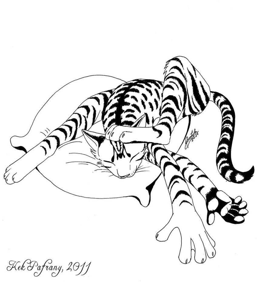 My cat Feleiksz by KekPafrany