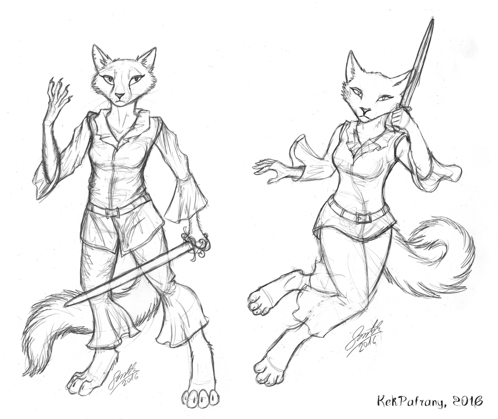 Cats with swords by KekPafrany