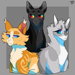The three but with different cats