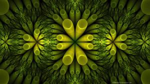 Microscopic Plants