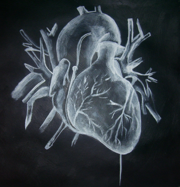 X ray heart by chemicallyabused on deviantart for X ray painting