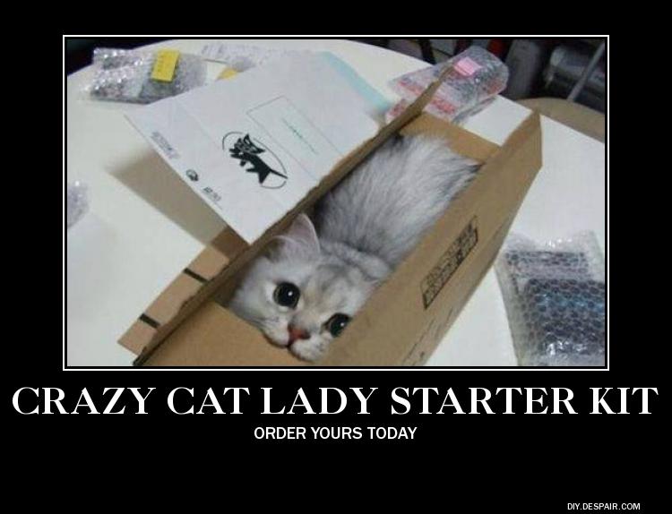 Cat Lady Starter Pack Meme