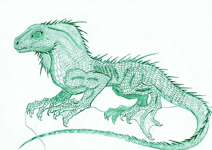 Chinese Water Lizard by Zhon