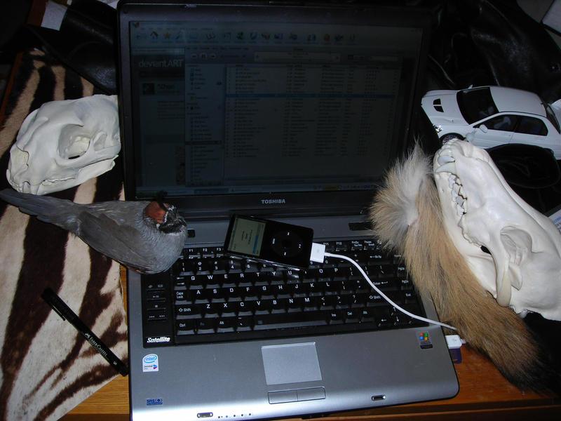 My Desktop ... My Life by Zhon