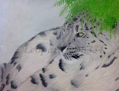 Contemplation  by leopardpath334