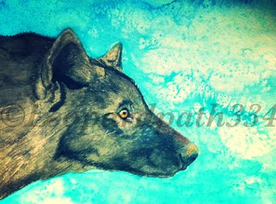 Ice wolf by leopardpath334